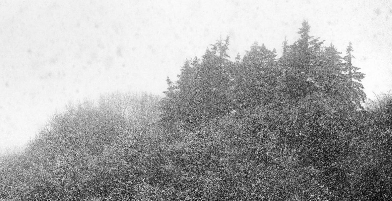 sneeuwstorm, glenn vanderbeke, sneeuw, ardennen, huy, hoei