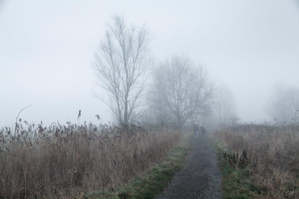 Mist fotografie in de Bourgoyen-Ossemeersen, mistlandschappen fotograferen, mistlandschap fotograferen, mist fotograferen, Wandelen in de Bourgoyen-Ossemeersen, Wandelaars in de Bourgoyen-Ossemeersen, Glenn Vanderbeke